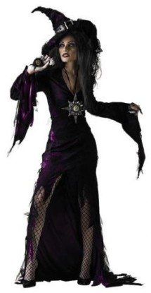 Sorceress outfit from buycostumes.com $29.99